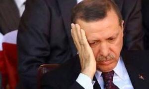 erdogan_dusunceli_ext